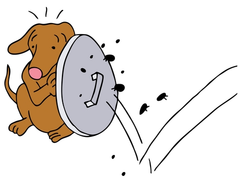 dog repelling fleas