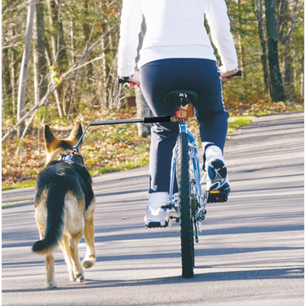 bicycling with your dog