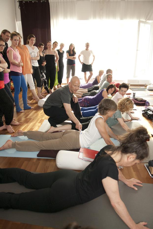 Yin Therapy - Yin Yoga & Anatomy Teacher Training I Hamburg - backbend analysis