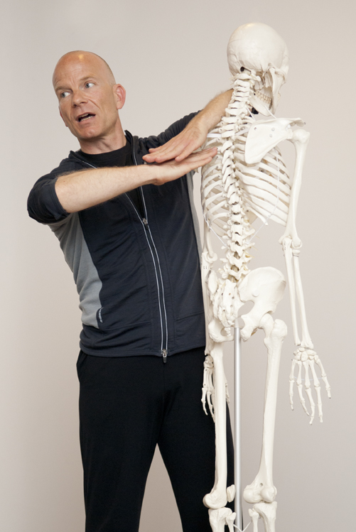 Yin Therapy - Markus Henning Giess - Vertebrae Analysis.jpg