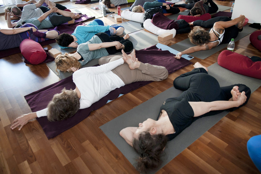 Yin Therapy - Yin Yoga & Anatomy Teacher Training I Hamburg - Cattail.jpg