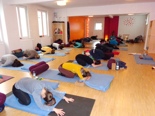 Yin Yoga & Anatomy Teacher Training I in Vinyaloft Bremen