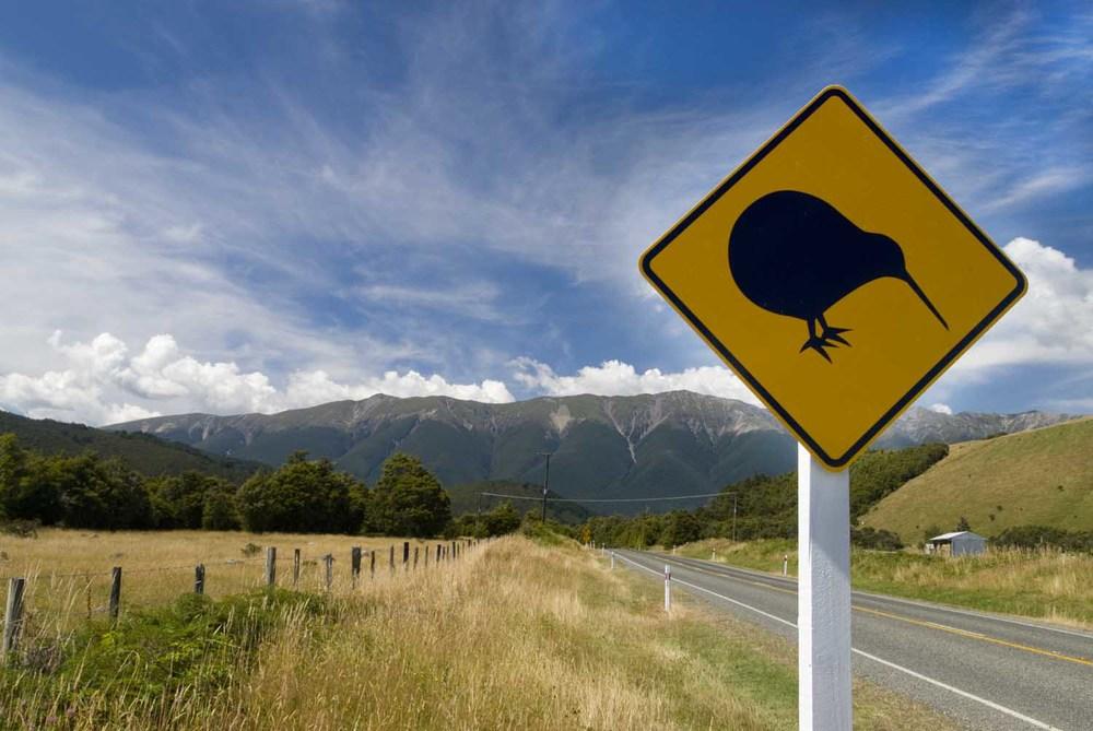 Yin Yoga New Zealand - Kiwi Crossing.jpg