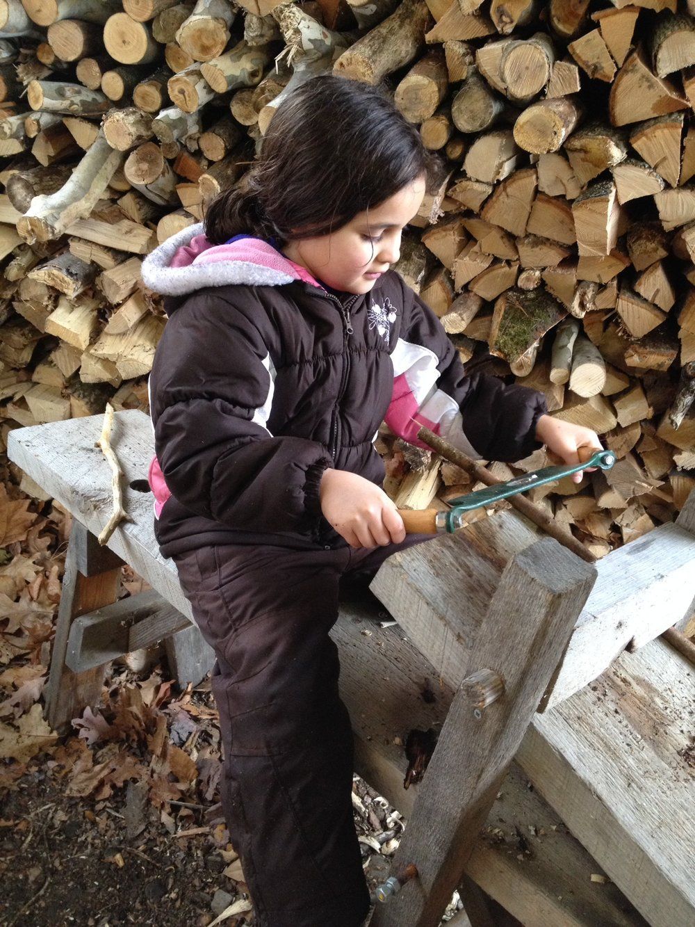 Wood Carving, Maple Sugar Family Weekend