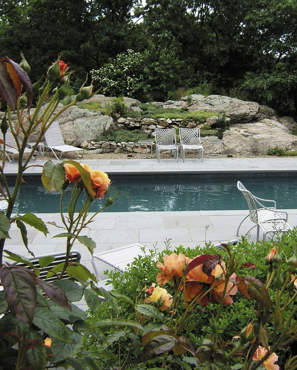 sullivan rose pool.jpg