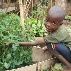 Vegetable gardens are a sustainable food source adding vital nutrients to children's diets and reducing the amount of food to be purchased.