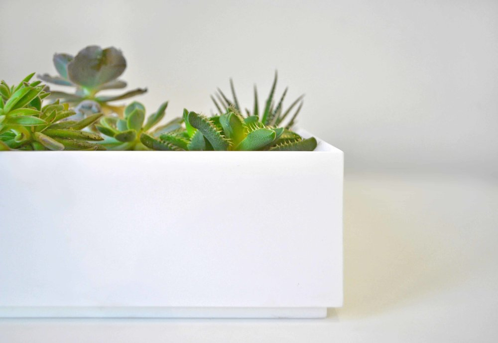 Bloom Box Planter