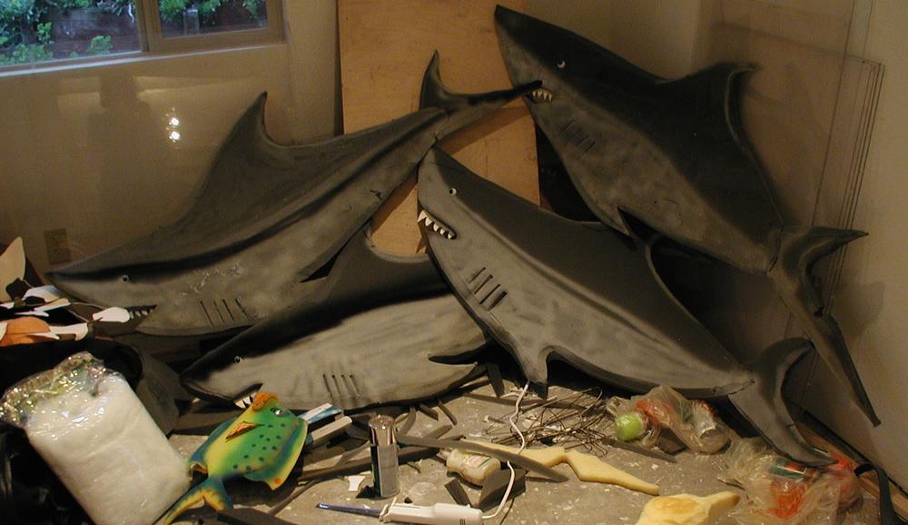 sharks for JT horiz.jpg