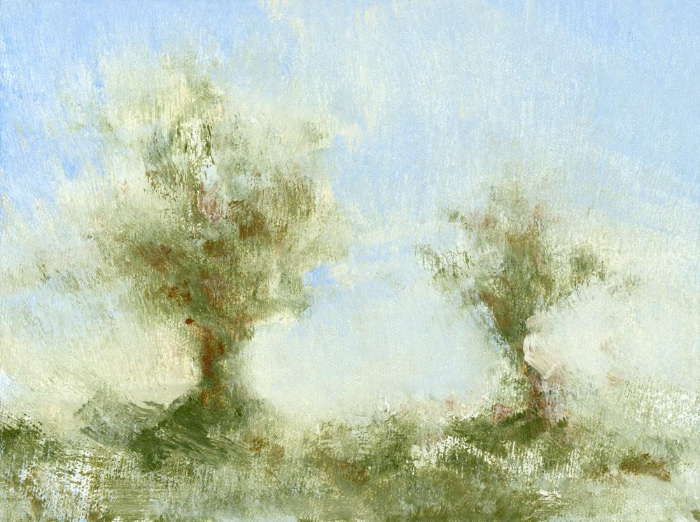 Glenn-Suokko-Landscape-913-2.jpg