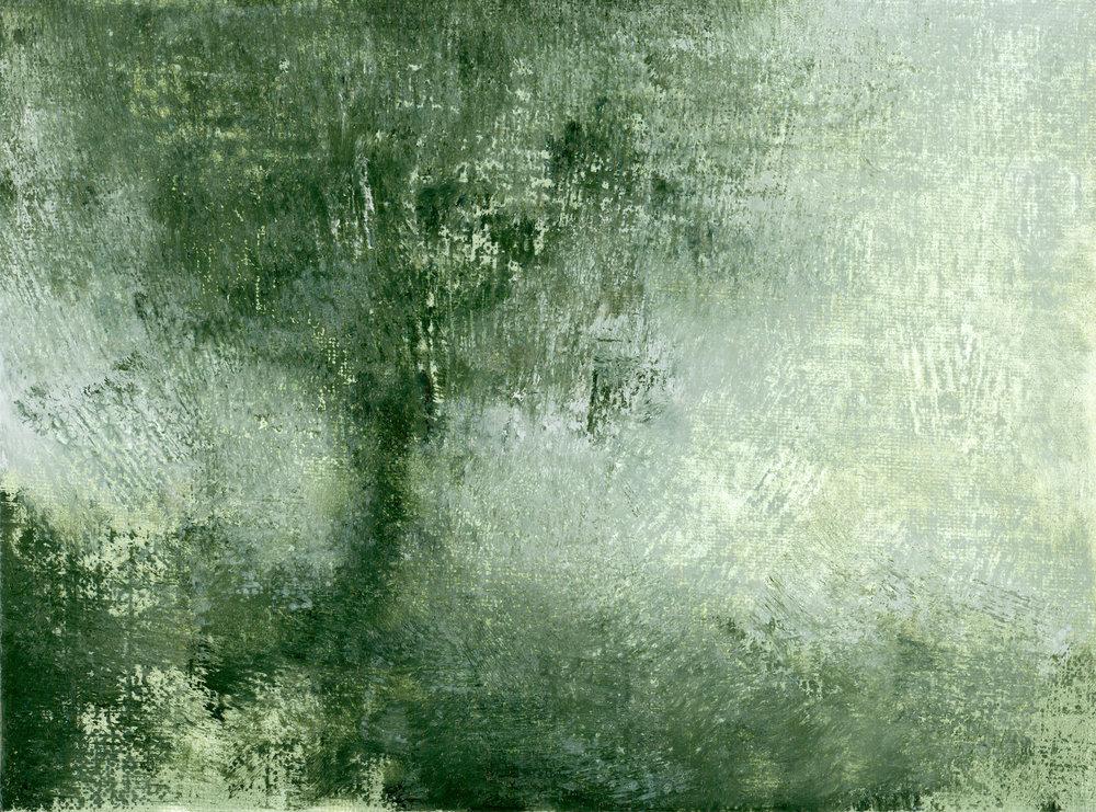 Glenn-Suokko-Landscape-926.jpg