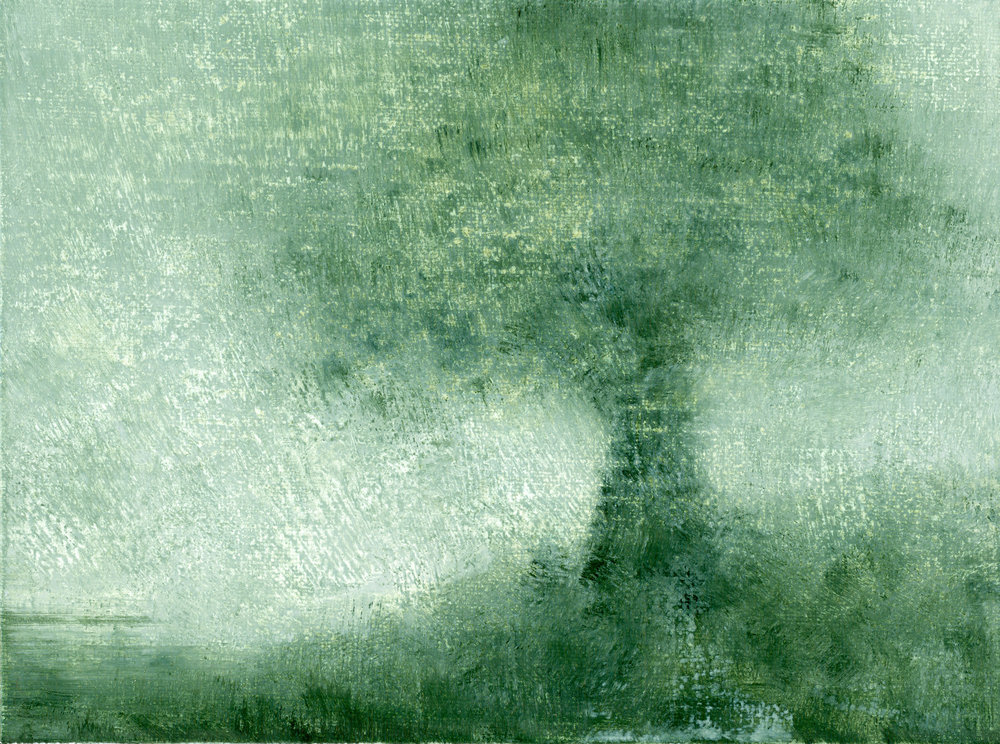 Glenn-Suokko-Landscape-931.jpg