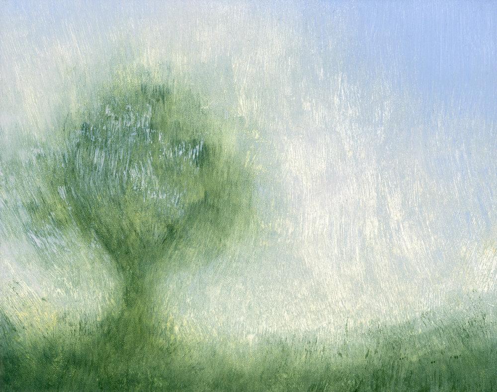 Glenn-Suokko-Landscape-935.jpg