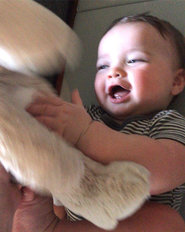 Kai-zario 8-months #farmbaby