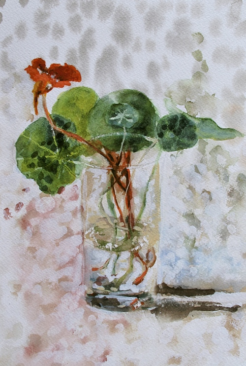 Nasturtiums+and+shadow.jpg