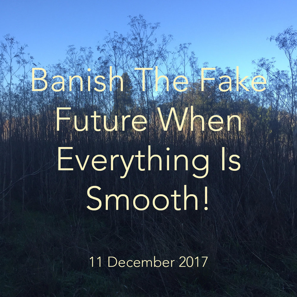 Banish The Fake Future.jpg