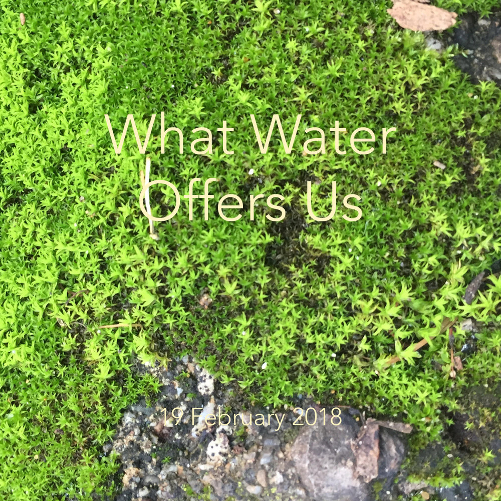 What Water Offers Us Feb 19.jpg