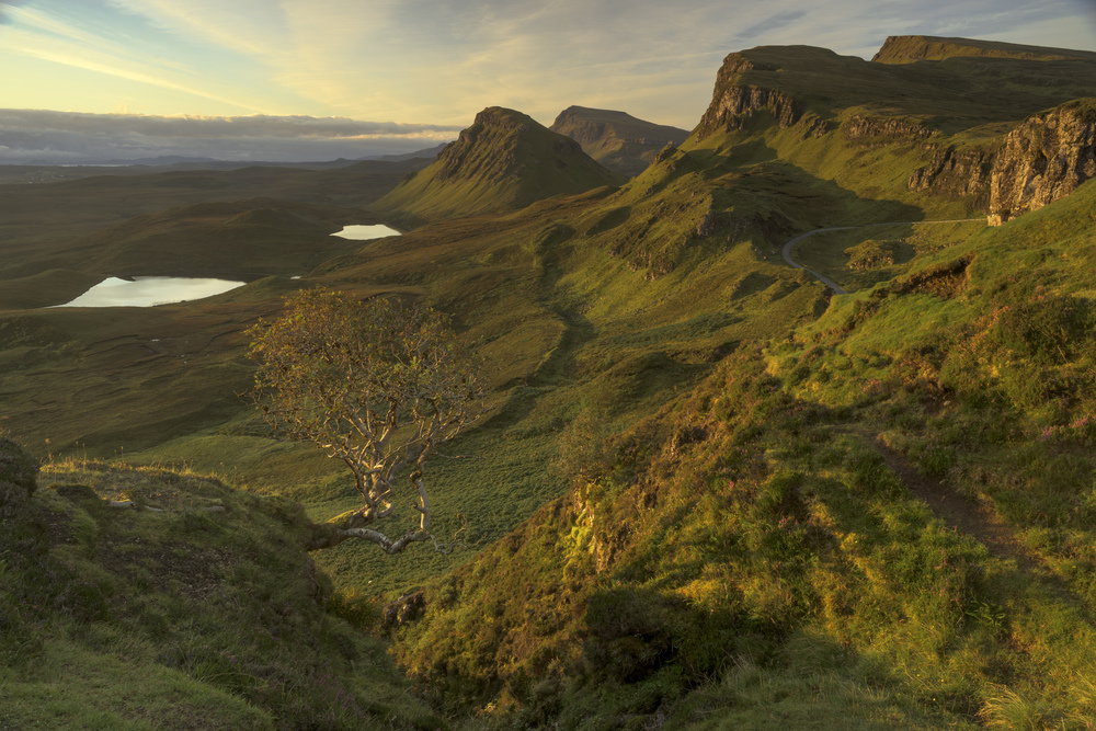 First light begins to fall over the Quirang, Skye.
