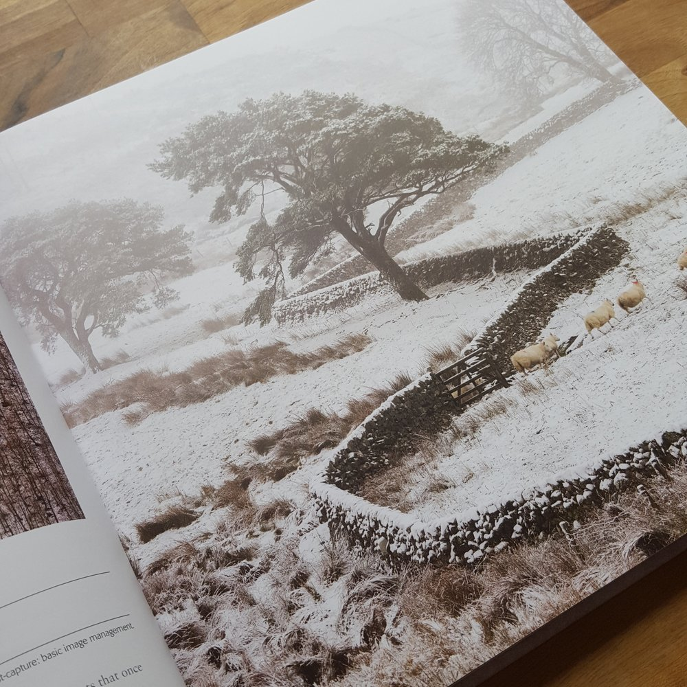 My image 'Crooked' in IGPOTY Book 10