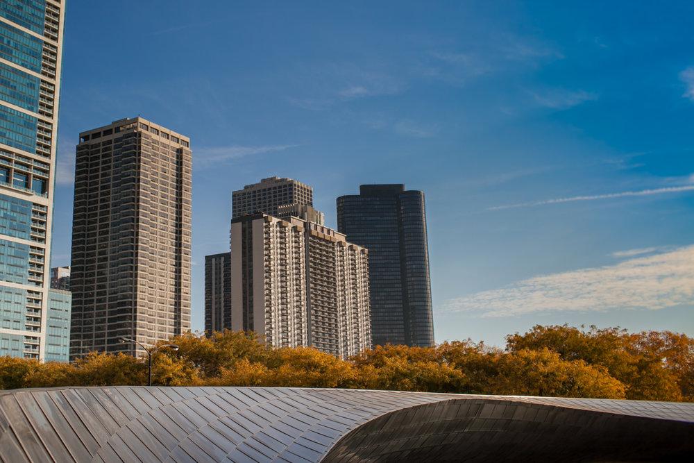ChicagoBean-105.jpg