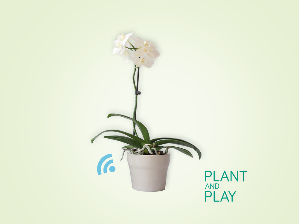 plant&play