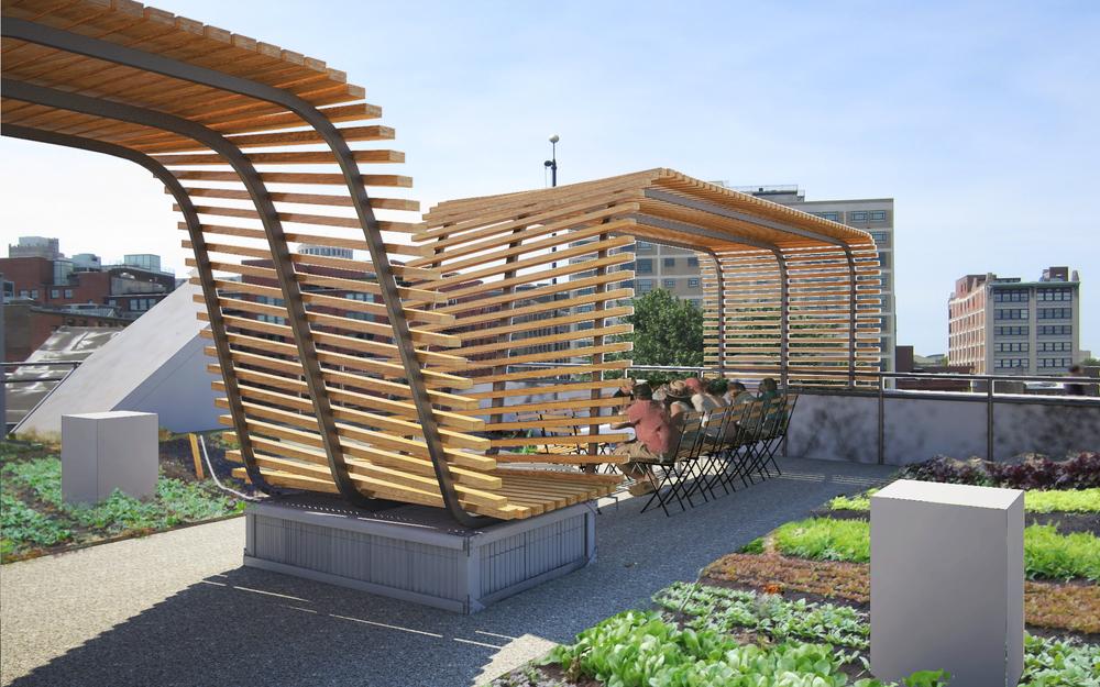 food roof farm urban harvest stl. Black Bedroom Furniture Sets. Home Design Ideas