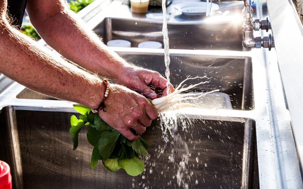 Hands washing white daikons in sink - splashing water