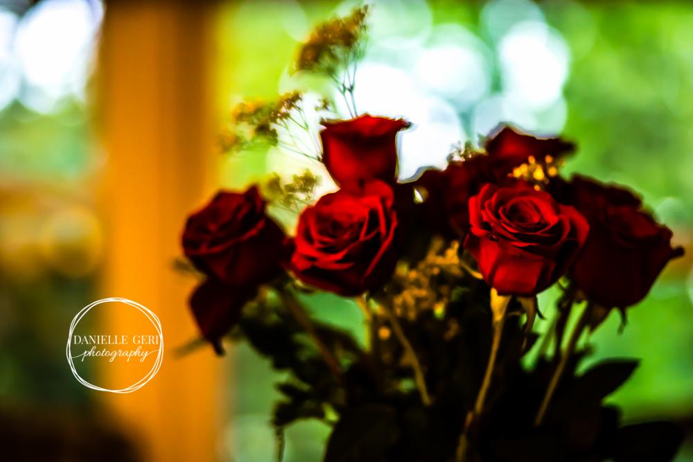 Buffalo MN Engagement Photography Roses