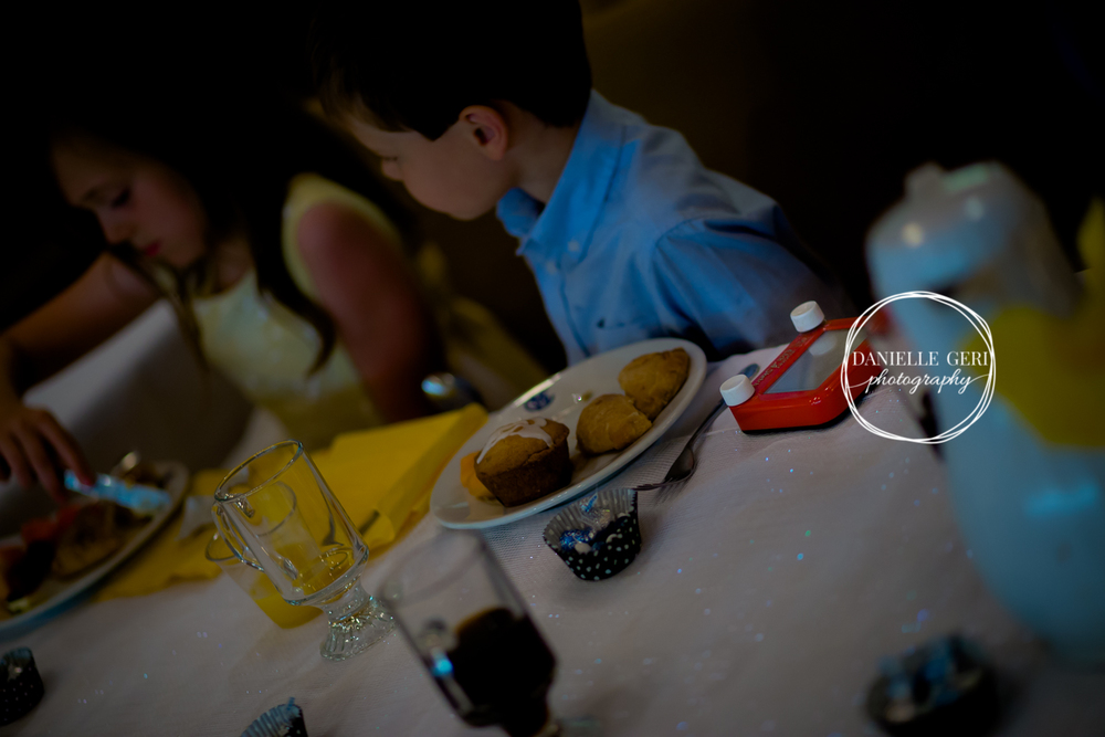 Cokato Minnesota Wedding Reception Photographer