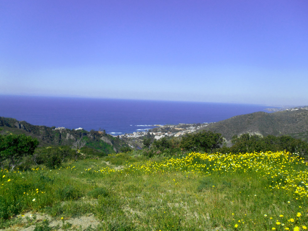 Laguna Niguel  Copyright Just Appraisals, Inc.