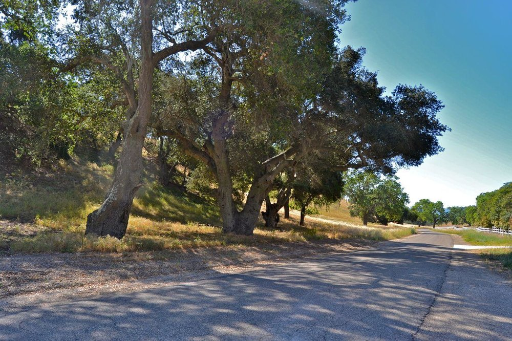 Rancho Ynecita Estate Site - $995,000