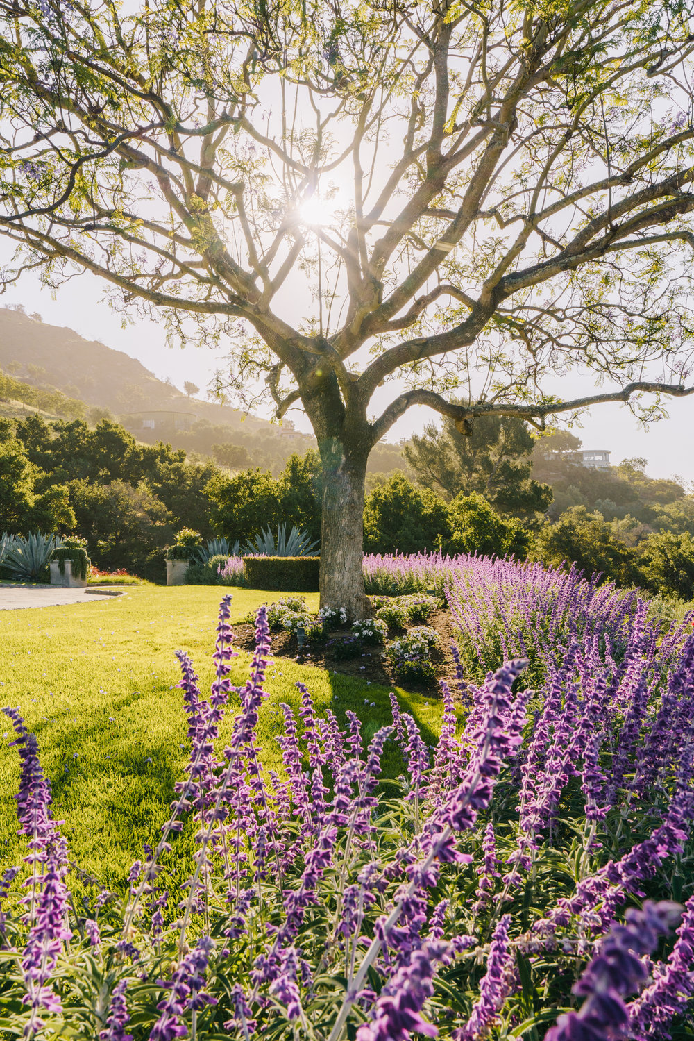 -31.25% Q2 - Montecito closed out Q2 with 44 properties sold, down 31.25% from last year.Click here to view the Montecito properties sold in Q2.