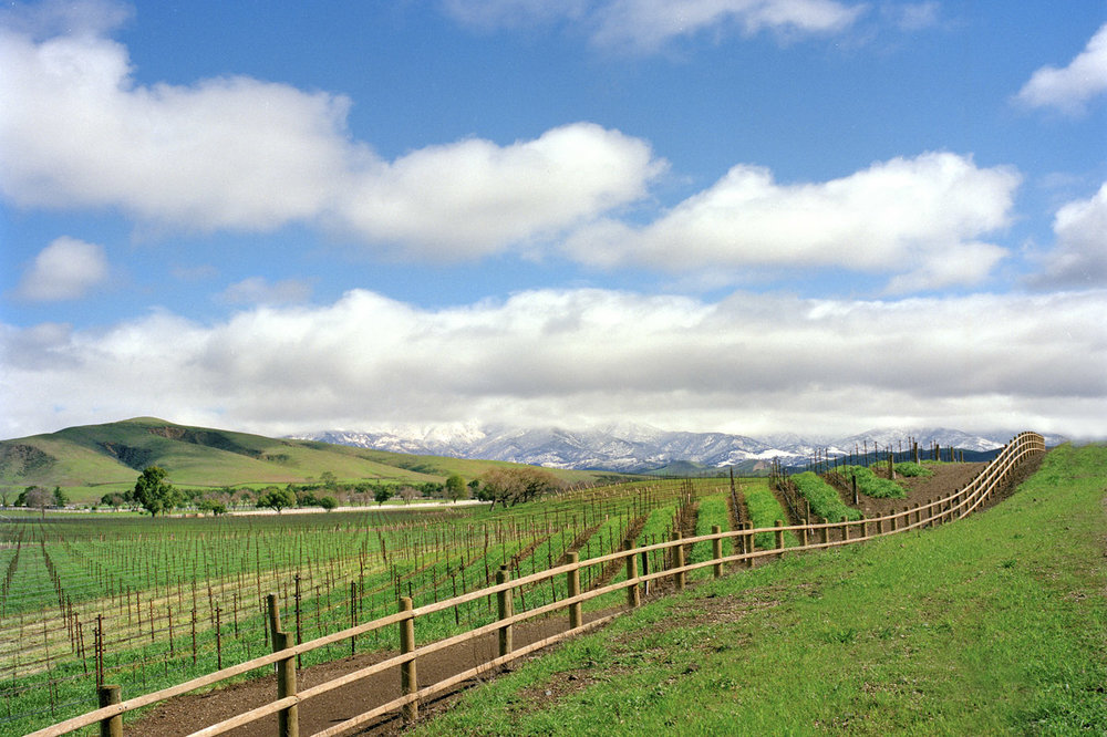 hap can vin snow fence8x10 300a_1.jpg