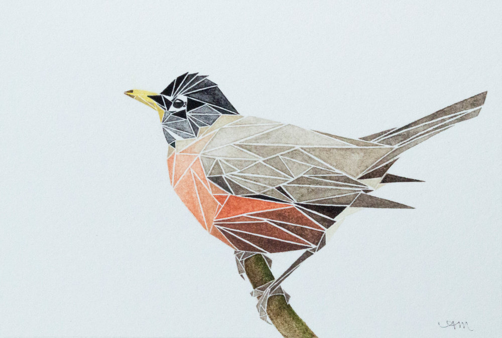 geometric american robin, watercolor on paper +