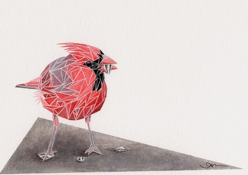geometric northern cardinal, watercolor on paper