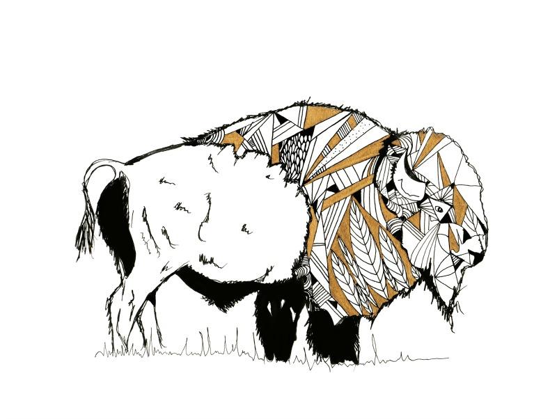bison print.jpg