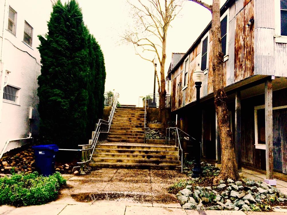 Levee Steps