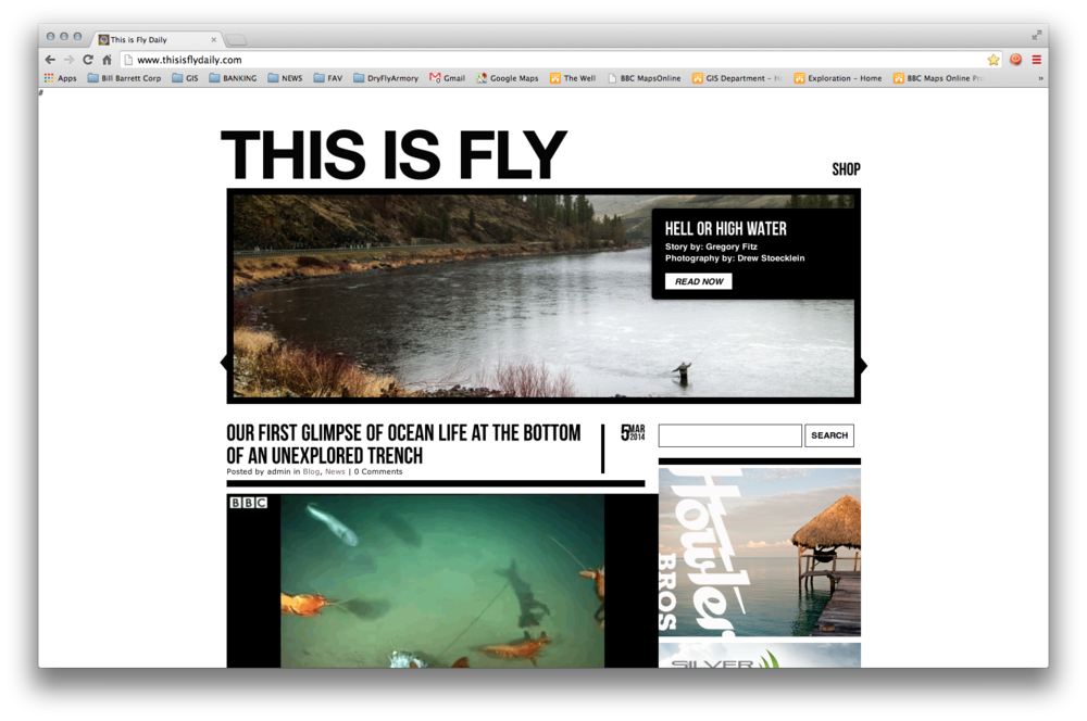 http://www.thisisflydaily.com/