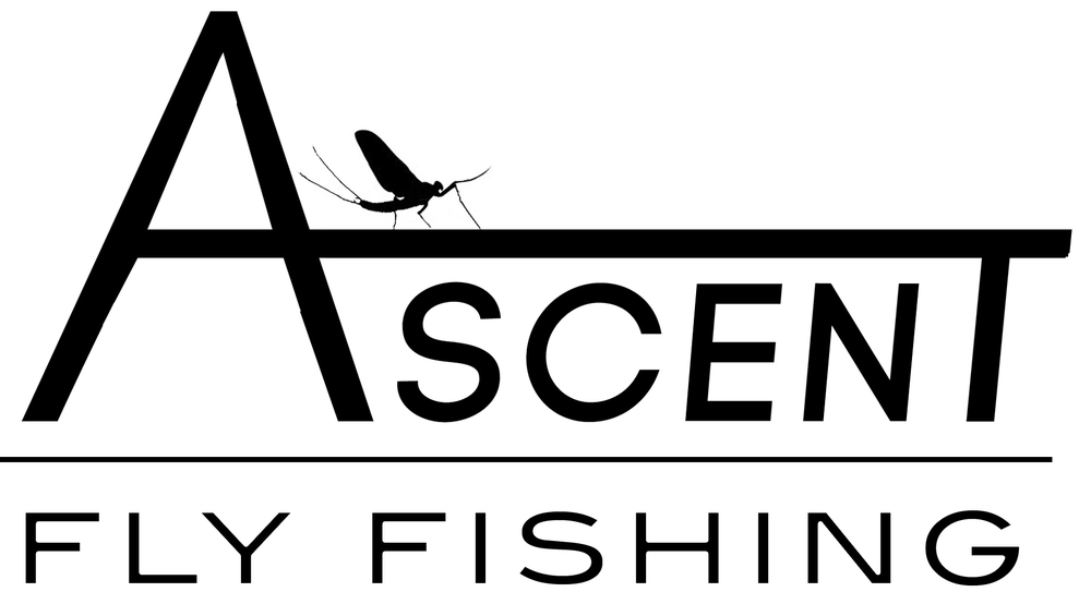 The nice guys at Ascent Fly Fishing invited us to have some of our gear at their Monthly Fly Sale. If you happen to be in the Front Range of Colorado this coming weekend, you are invited to swing by their monthly open door sale and take advantage of unbeatable prices on flies, tools, tippet, leaders, and fly fishing accessories. Or even score some of our Junk!!    August 16th & 17th from 8am - 5pm     The sale will be held at:          8157 W Morraine Dr. Littleton, CO 80128 (Click For Map)