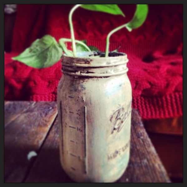 Hand painted Mason Jars with Annie Sloan Provence and Country Grey chalk paint.
