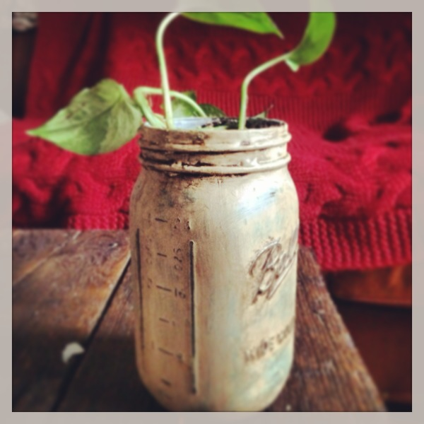 Hand painted Mason Jars with Annie Sloan Provence and Country Grey chalk paint