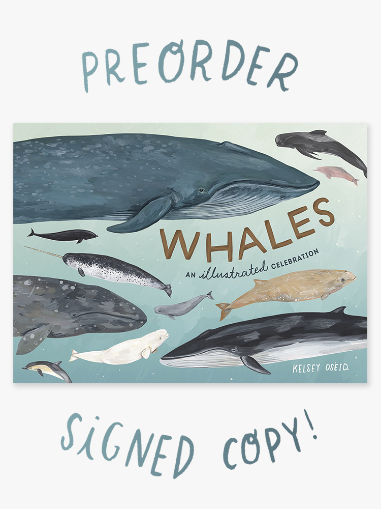 whales preorder.jpg