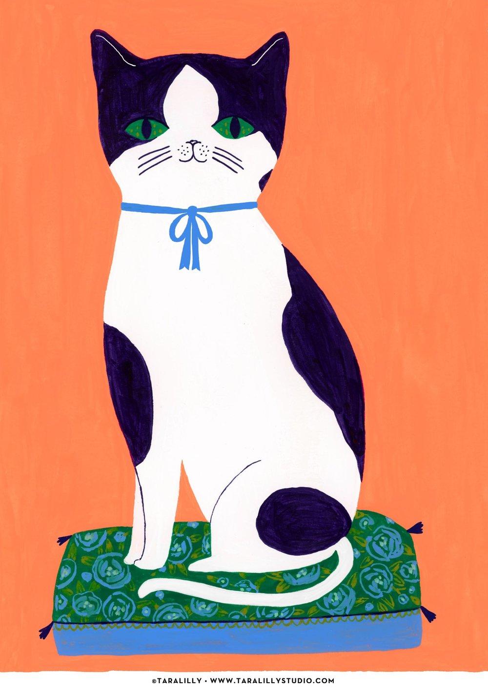 Tara_PP_BW_Kitten.jpg