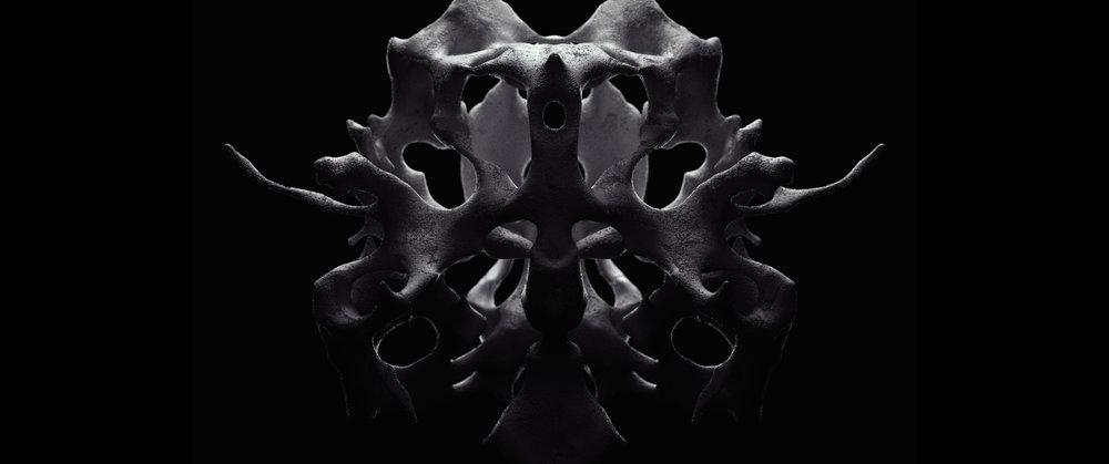 skeleton_gen_wide.jpg
