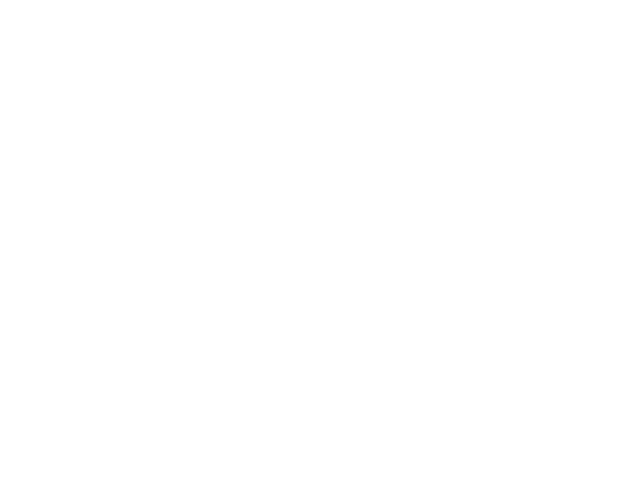 THE STEEL HORSE GROUP PRIVATE INVESTIGATIONS