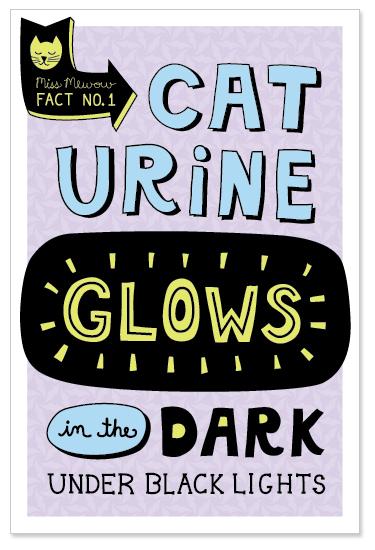 Cat Urine Glows in the Dark Under Black Lights.