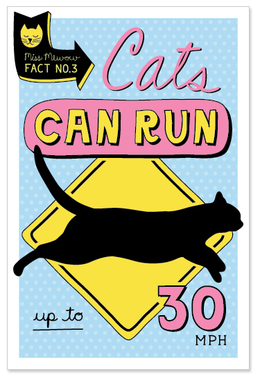Cats can run up to 30 MPH.