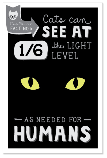 Cats can see at 1/6th the light level as needed for humans.