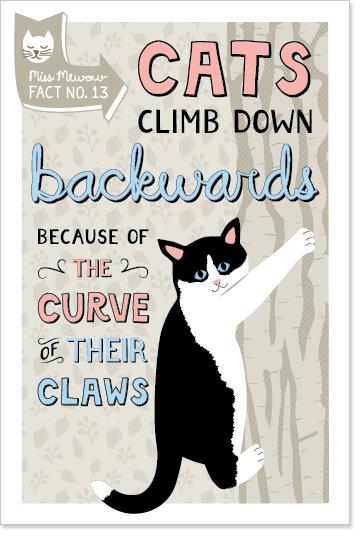 Cats climb down backwards because of the curve of their claws.