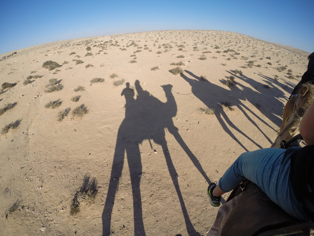 Shadows of our camel ride.