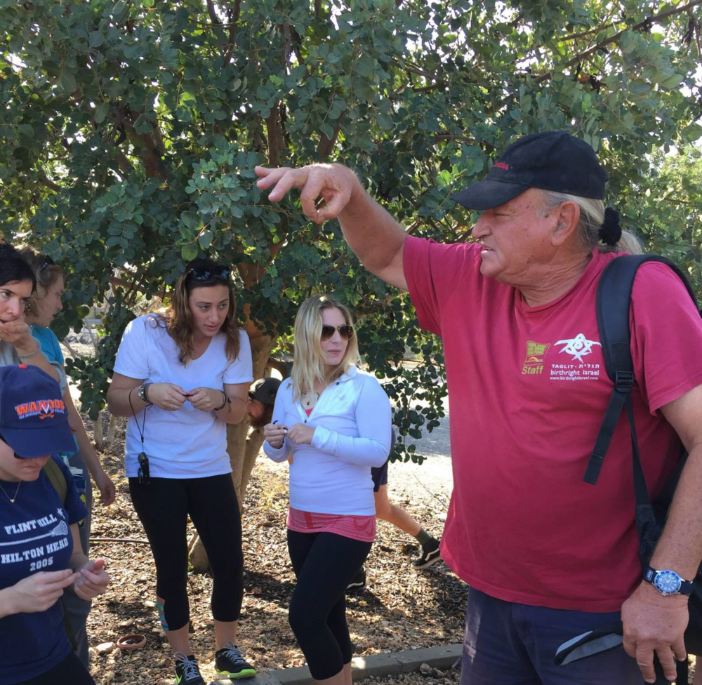 Maxi telling the group about the Carob tree.